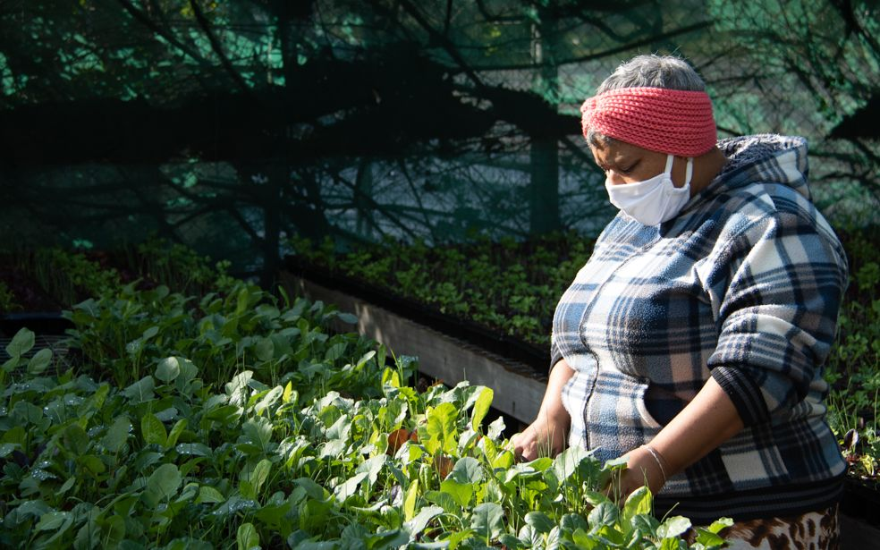 Promoting environmental economic growth